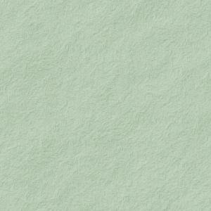 和紙のようなテクスチャのパターン