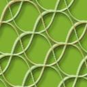 曲線のパターン
