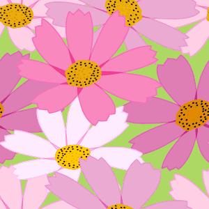 コスモスの花がモチーフのパターン