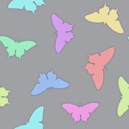 蝶をモチーフにしたレインボーカラーのパターン