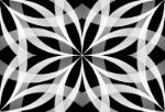 パターン6248